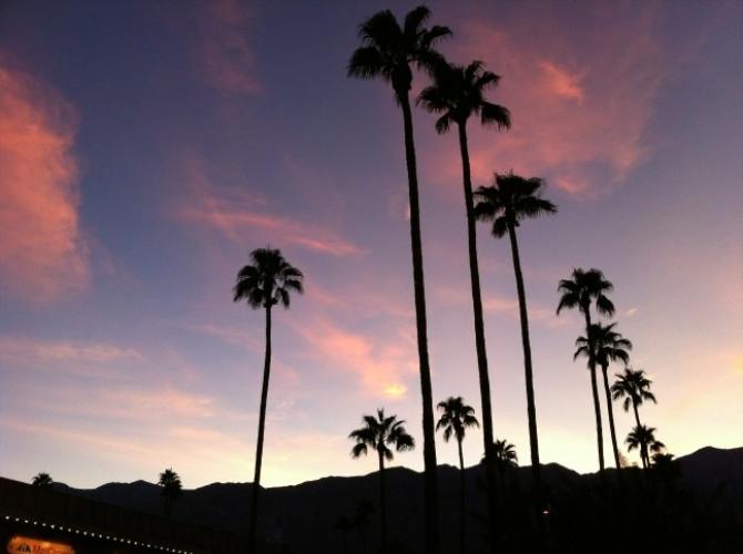 South Palm Canyon at dusk